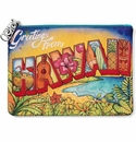 Brighton Hawaii Travel Pouch Multi