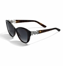 Brighton Illumina Sunglasses