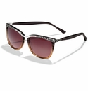 Brighton La Scala Fade Sunglasses