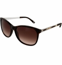 Brighton Spectrum Sunglasses Tortoise