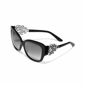 Brighton Tamal Sunglasses