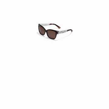 Brighton Toledo Lattice Sunglasses
