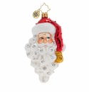 Christopher Radko Grinning Santa Ornament