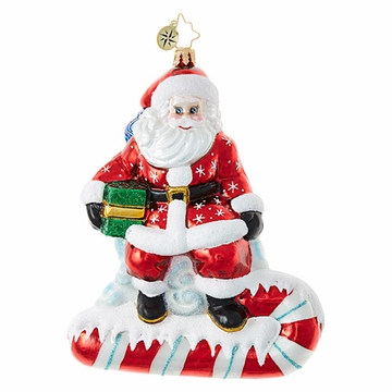 Christopher Radko Sweet Surfer Santa Ornament