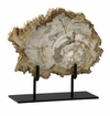 Cyan Design Medium Petrified Wood On Stand