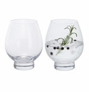 Dartington Gin Tumbler Pair