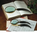 Dessau Home Horn & Antique Brass Magnifying Glass Set Home Decor