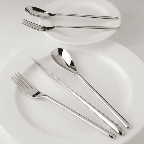 Fortessa Stainless Flatware Dragonfly 5 Piece Place Setting