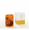 Lucid Liquid Candles Pumpkin 3x4 Pillar Candle