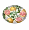 Michel Design Works Pink Grapefruit Glass Soap Dish