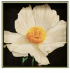 Rock Flower Paper Matillija Poppy 15 inch Square Tray