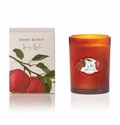 Rosy Rings Botanica Glass Candle Spicy Apple