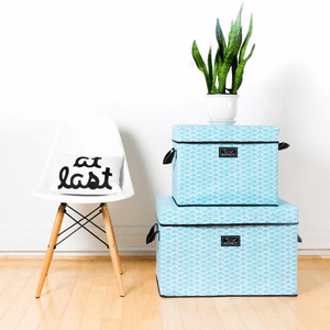 Scout Home and Dorm Storage
