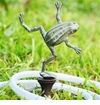 SPI Home Dancing Frog Hose Guard