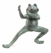 SPI Home Flexing Tai Chi Frog