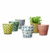 SPI Home Pretty Pot Varietals Set of 6
