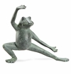 SPI Home Stretching Tai Chi Frog