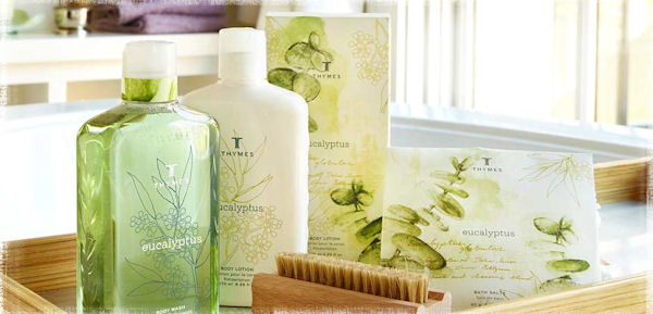 Thymes Eucalyptus Fragrance Collection