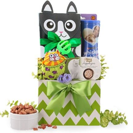 Cat Fish Cat Gift Basket