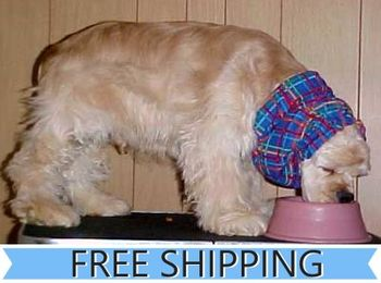 Dog Snoods - CLOSE OUT - FREE SHIPPING
