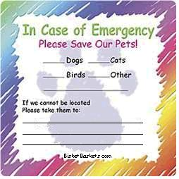Emergency Labels (Set of 2)