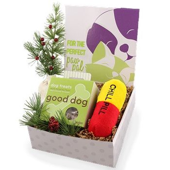 Good Dog Christmas Care Package