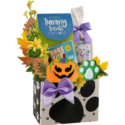 Just BePaws Halloween Dog Gift