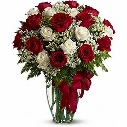 Love's Divine Red and White Roses