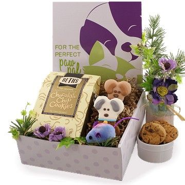 Pet Lover Holiday Care Package (Dog, Cat, Owner)