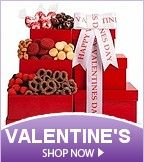 Valentine�s Day Gifts