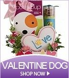 Valentine�s Day Pet Gifts