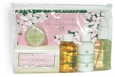 Plumeria To Go Gift Set Ready for Carry-On - Terra Nova