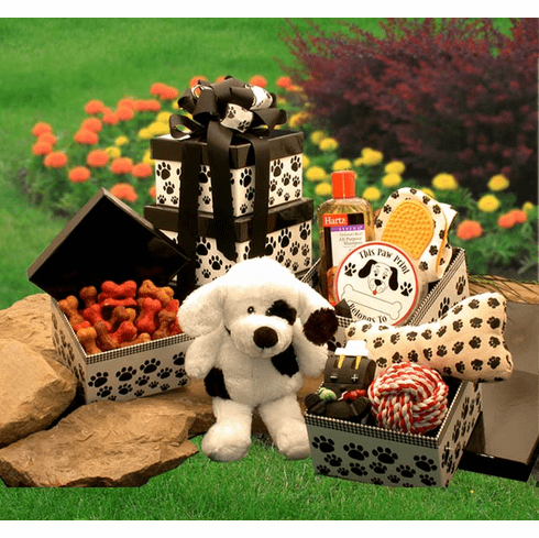 Patche's Doggie Tower Gift Set