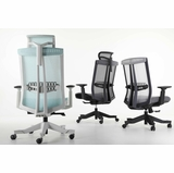 <b><font color=#c60>MESH OFFICE CHAIRS KEEP YOU COOL AND COMFY MAKING YOU MORE PRODUCTIVE. OVER 130 MODELS INCLUDING COMPUTER CHAIR AND ERGONOMIC OFFICE CHAIR:</b></font>