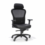RFM Executive Mesh Chair. Mesh Seat & Back. With Headrest