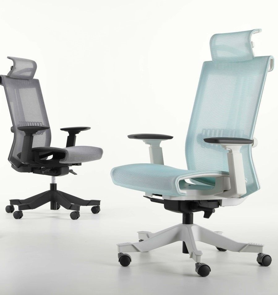 <b><font color=#c60>THE BACKBONE MESH CHAIR BY ERGONOMICHOME.COM. WE'VE GOT YOUR BACK! MODEL EH-S6-DAL-WGNM3. VIDEO:</b></font>