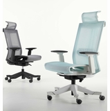 <b><font color=#c60>THE BACKBONE VERTEBRA MESH CHAIR BY ERGONOMICHOME.COM. WE'VE GOT YOUR BACK! MODEL EH-S6-DAL-WGNM3. VIDEO:</b></font></font></b>