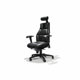 VERTE ERGONOMIC ADJUSTABLE CHAIR W/HEADREST/LUMBAR SUPPORT #22111