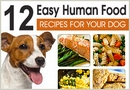 12 Human Food Recipes for Dogs