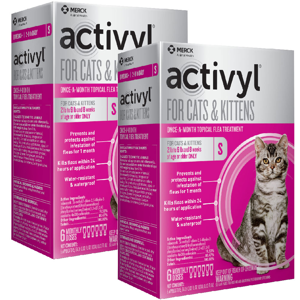 12 MONTH Activyl Spot-On for Cats & Kittens (2-9 lbs) im test
