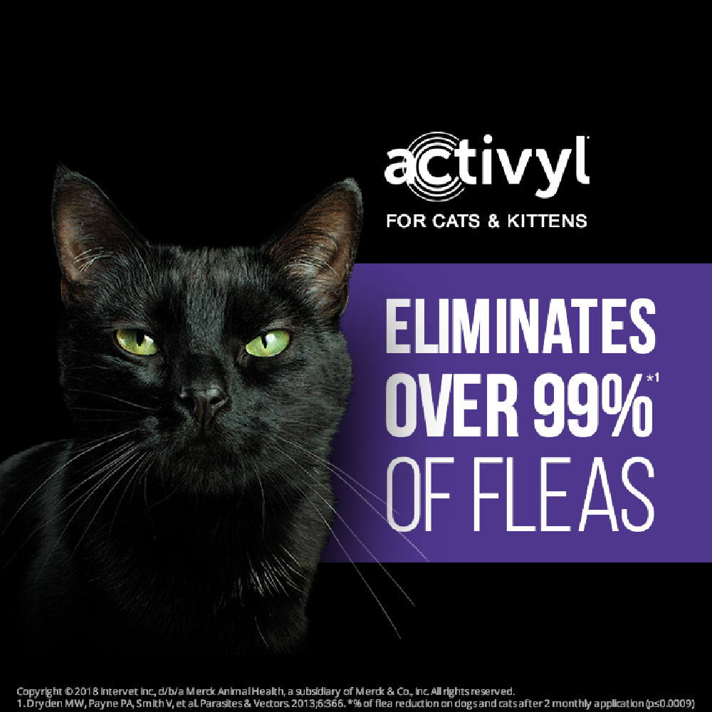 12-MONTH-ACTIVYL-SMALL-DOGS