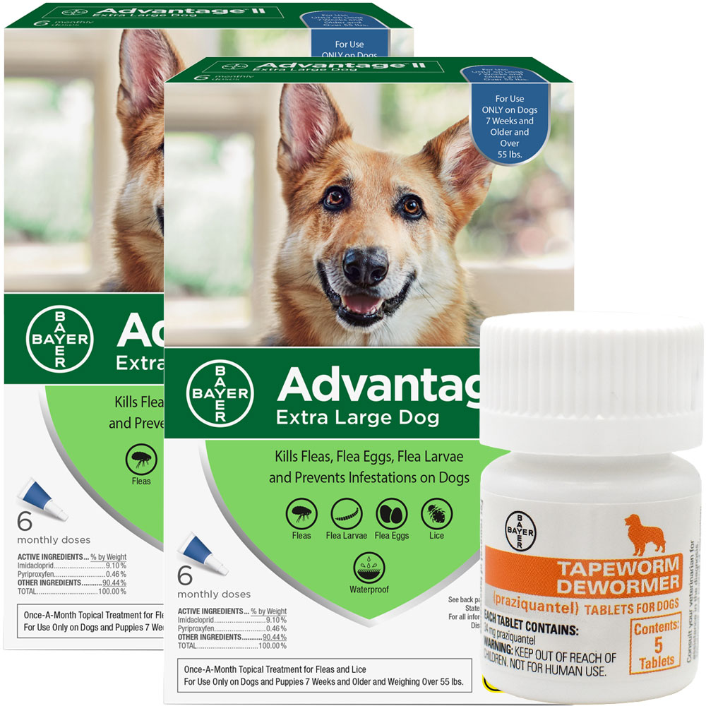 12 MONTH Advantage II Flea Control for Extra Large Dogs (Over 55 lbs) + Tapeworm Dewormer for Dogs (5 Tablets) im test
