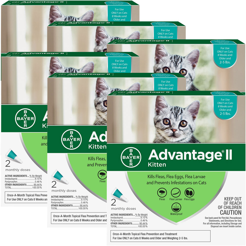 Image of 12 MONTH Advantage II Flea Control for Kittens (2-5 lbs)