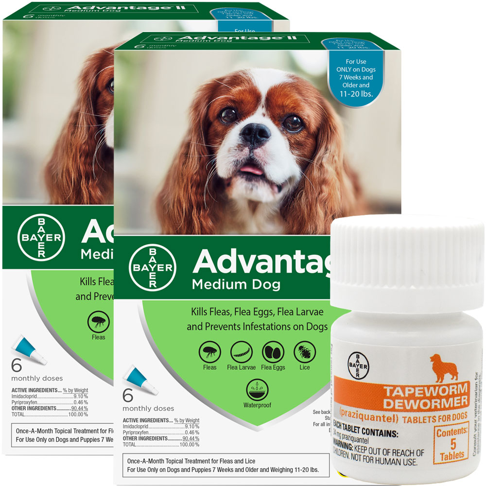 12 MONTH Advantage II Flea Control for Medium Dogs (11-20 lbs) + Tapeworm Dewormer for Dogs (5 Tablets) im test