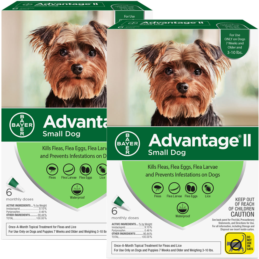 12 MONTH Advantage II Flea Control for Small Dogs (under 10 lbs) im test