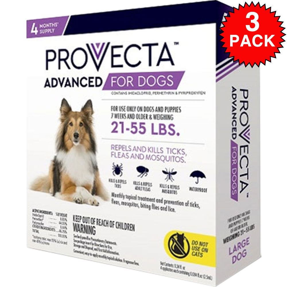 12 MONTH Provecta Advanced for Large Dogs (21-55 lbs) im test
