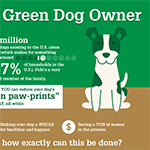 14 Ways To Go Green With Your Dog