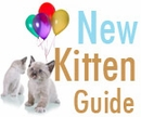 18 Must-Have Products For New Cats