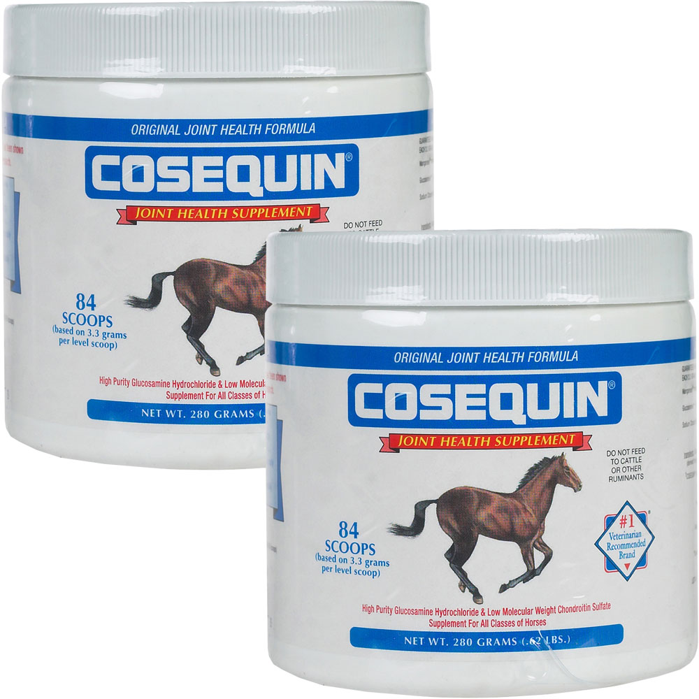 2 Pack Cosequin EQUINE Powder Concentrate - 560 gm - from EntirelyPets