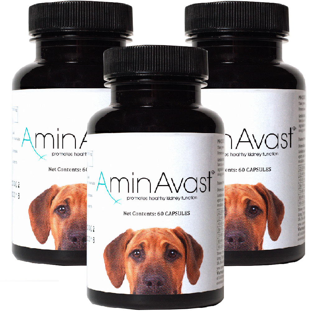 3-PACK AminAvast Kidney Support for Dogs (180 capsules) im test